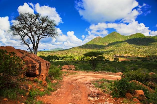 Camino de tierra con montañas verdes