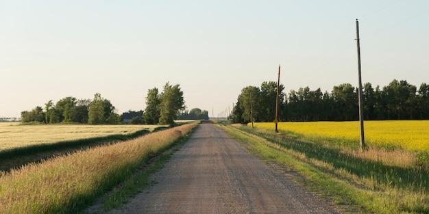 Camino de tierra que pasa a través de un campo de la pradera, manitoba, canadá