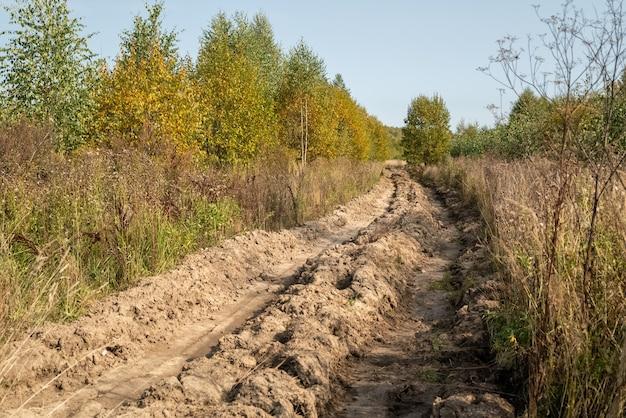 Camino de tierra roto en el campo