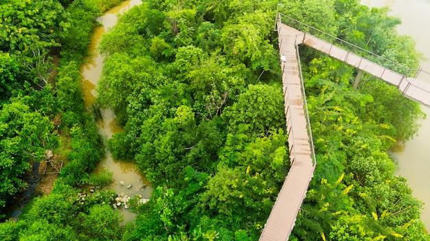 Camino de la vista superior a pie en la pasarela de madera del cielo en el bosque con árboles y el río.