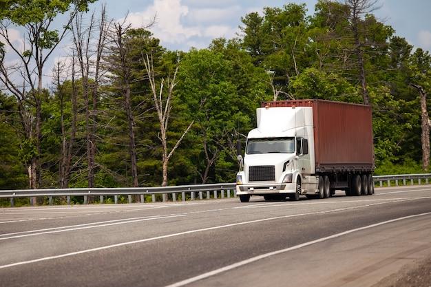 Camión blanco con contenedor de mar en una carretera en verano