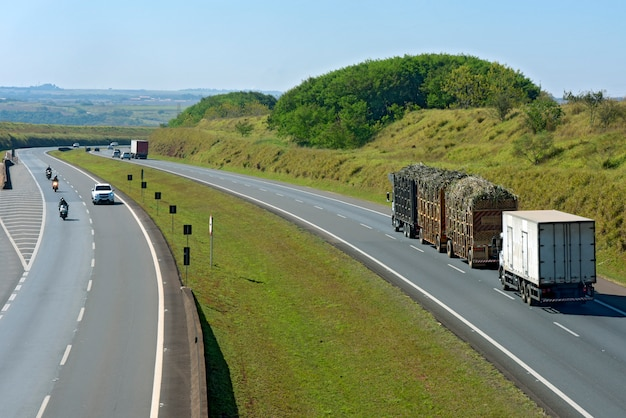 Camioneta transportando caña de azúcar en la carretera.