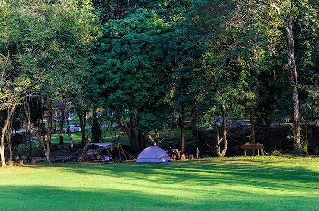 Camping y carpa en parque natural.
