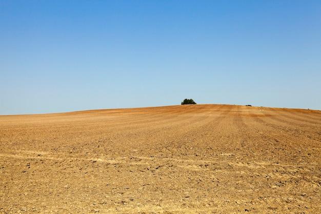 Campo agrícola arado - campo agrícola arado