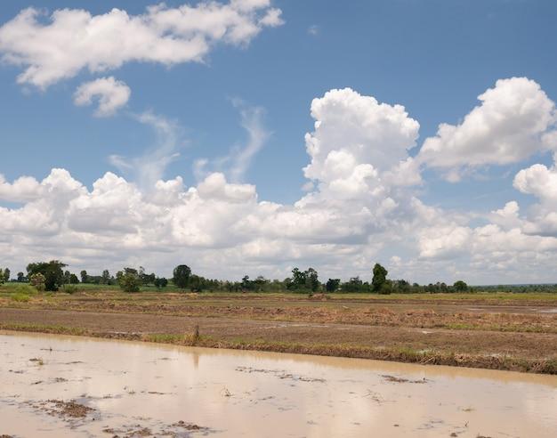 Campo arado listo para plantar