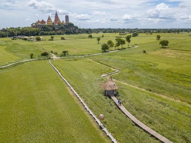 Campo de arroz cerca del templo de tuum sua (templo de tiger cave), kanchanaburi, tailandia