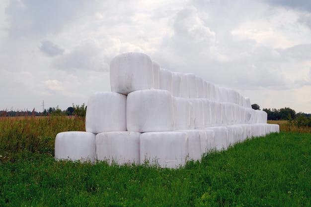 Campo biselado y paja en rollos, colocados cuidadosamente en una pila sobre la hierba verde