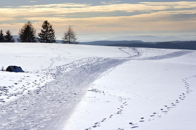 Campo cubierto de nieve con colinas y vegetación en el fondo durante la puesta de sol