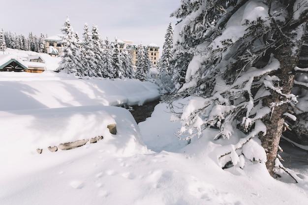 Campo cubierto de nieve en invierno
