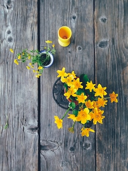 Campo de flores amarillas en jarrones de colores