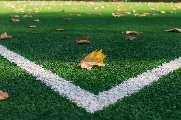 Campo de fútbol de césped artificial, una línea de marcador de esquina.