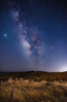 Campo de hierba marrón bajo un cielo azul durante la noche