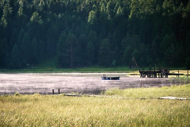 Campo de hierba seca cerca del agua con árboles