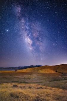 Campo de hierba verde y marrón bajo un cielo azul con estrellas durante la noche