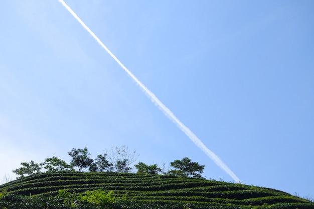 Campo con línea cruzando el cielo