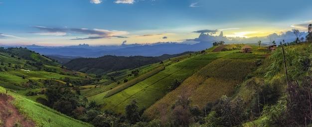 Campo y montañas verdes del arroz en el arroz del pa bong piang, mae chaem, chiang mai, tailandia.