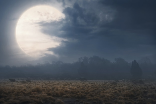 Campo con niebla y nubes oscuras.