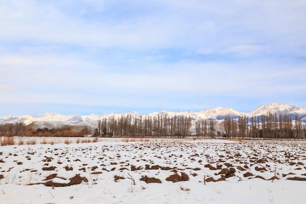 Campo en la nieve contra el fondo de árboles y montañas nevadas