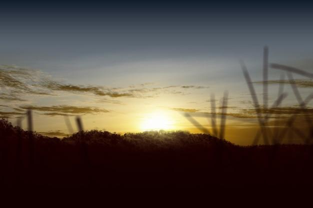 Campo de pradera con un cielo al atardecer