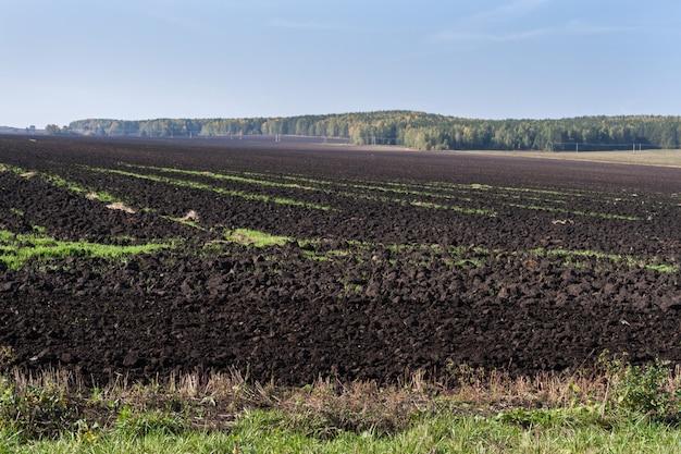 Campo recién arado y bosque de otoño.