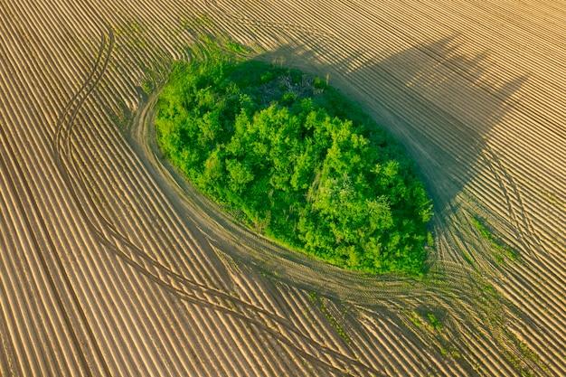 Un campo sin sembrar vacío y un césped verde en medio de una vista de drone