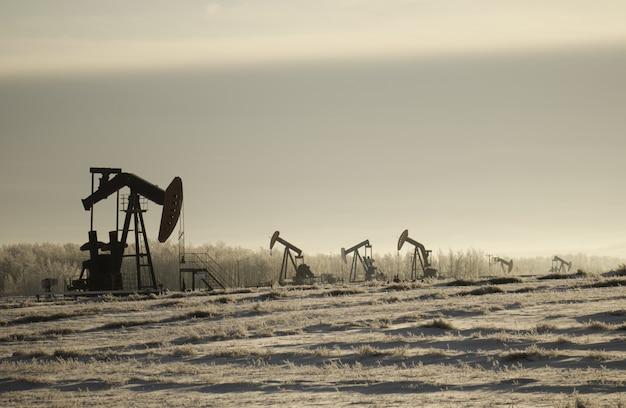 Campo con tomas de bomba de aceite rodeado de vegetación bajo un cielo nublado y la luz del sol