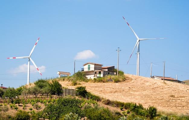 Campo de trigo con molinos de viento.