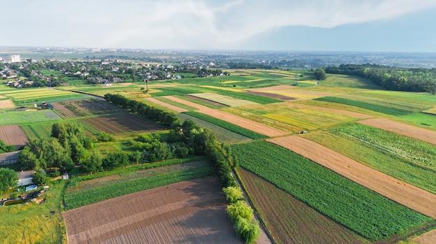 El campo verde está al atardecer con el dron.