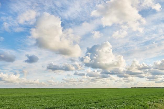 Campo verde y hermoso cielo nublado como telón de fondo