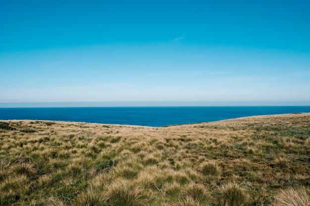 Campo verde y mar