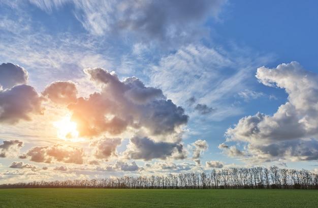 Campo verde con el telón de fondo de un hermoso cielo nublado al atardecer