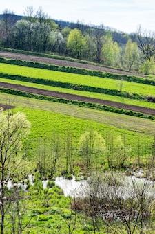 Campos agrícolas privados geométricos cerca de lagos