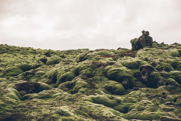 Campos de lava islandeses