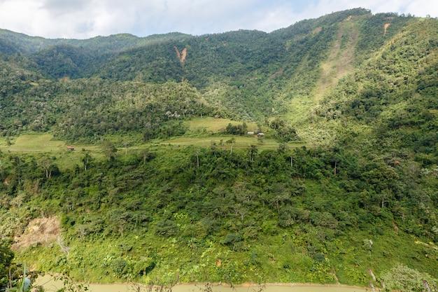 Campos y selva en la ladera de la montaña.