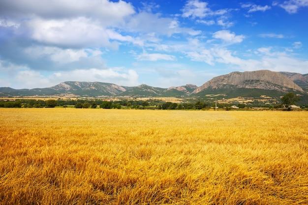 Campos en el valle de la montaña