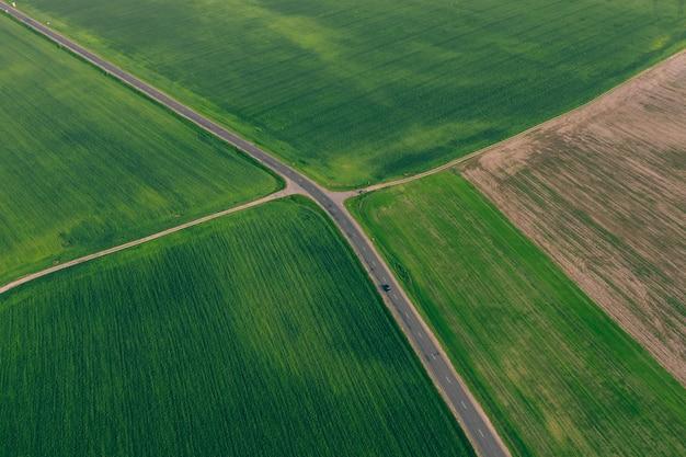 Campos verdes con trigo y una carretera entre ellos. agricultura con altitud