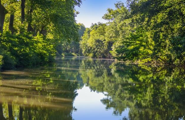Canal du midi, sicómoro reflejo en el agua, sur de francia