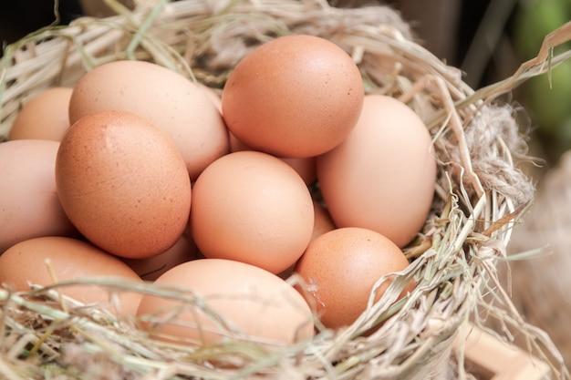 Canasta de huevos de gallina en el oye en la granja.