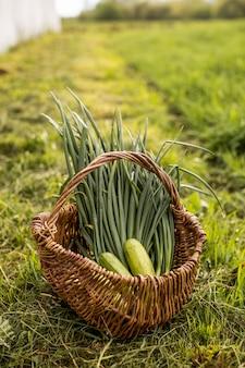 Una canasta con verduras