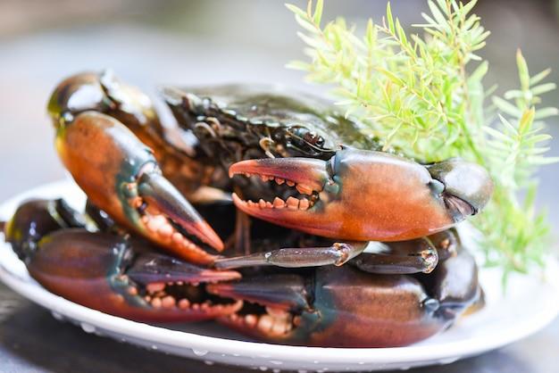 Cangrejo de barro serrado de mariscos frescos