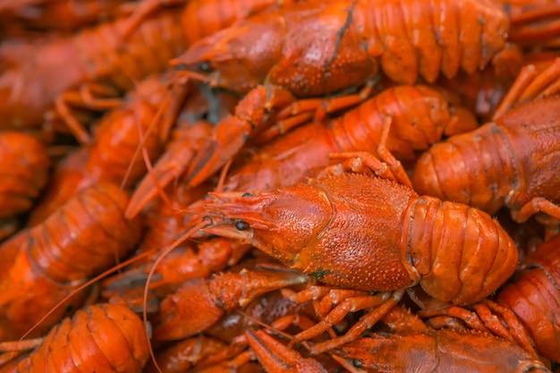 Cangrejo grande hervido. cangrejo de río a la cerveza. hervir el cangrejo de luisiana.