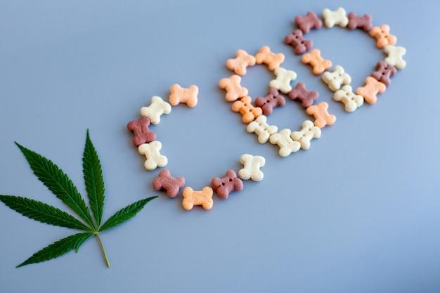El cannabis cbd se encuentra en golosinas para perros y gatos