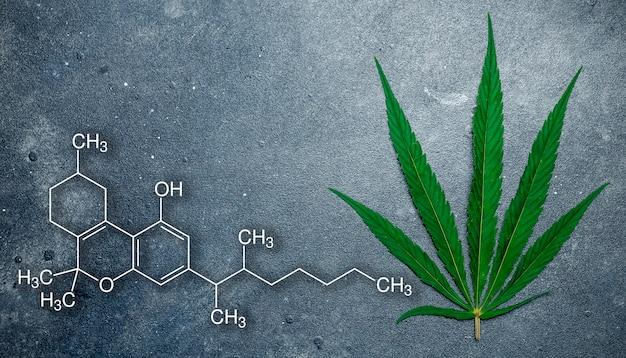 Cannabis (marihuana) deja en un oscuro