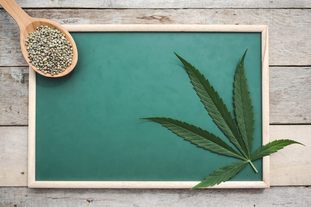 Cannabis, semillas de marihuana, hojas de marihuana, colocadas sobre una tabla verde sobre un piso de madera.