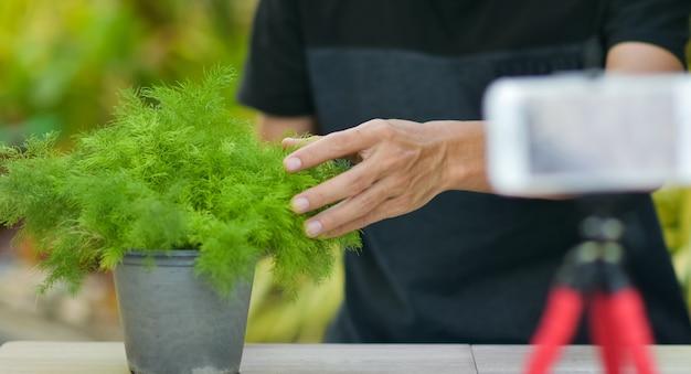 Capacitación en línea de v logger para plantar cactus y jardinería doméstica, trabajar desde casa en internet