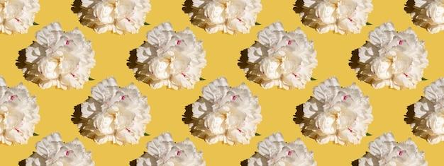 Capullo de peonía blanca sobre un fondo amarillo. patrón sin costuras, diseño de tela, papel tapiz, logotipo, moda, estampado. bandera
