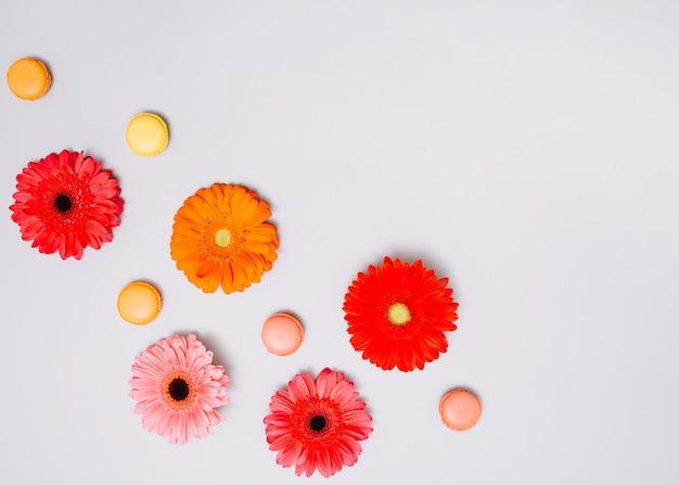 Capullos de flores con galletas en la mesa