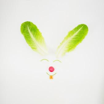 Cara de conejo hecha con verduras