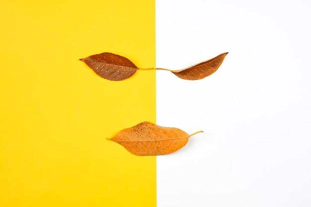 Cara de otoño creativa y divertida hecha con hojas de otoño naranjas sobre un fondo brillante