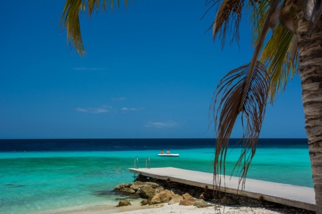 Caribe playa turquesa